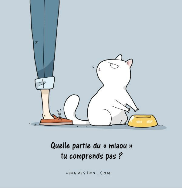 chat-dessins-lingvistov-10