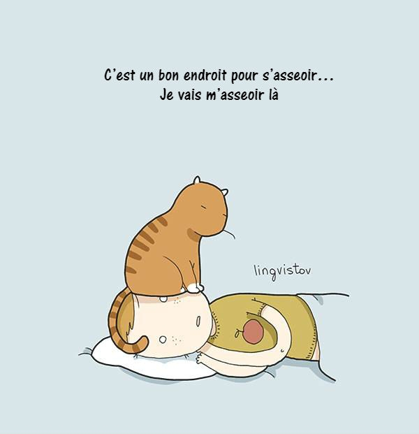 chat-dessins-lingvistov-13