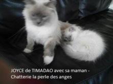 joyce-et-sa-maman-2