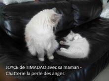 joyce-et-sa-maman-3