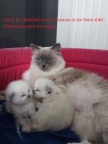 joyce-et-sa-maman-7