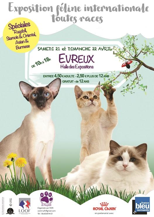 expo feline evreux 21 et 22 avril 2018
