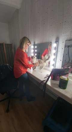 casting shooting photo chaton chat ragdoll chatterie la perle des anges ragdoll normandie caen calvados 21