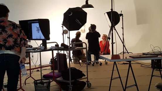 casting shooting photo chaton chat ragdoll chatterie la perle des anges ragdoll normandie caen calvados 5