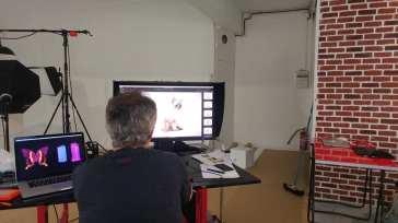 casting shooting photo chaton chat ragdoll chatterie la perle des anges ragdoll normandie caen calvados 6